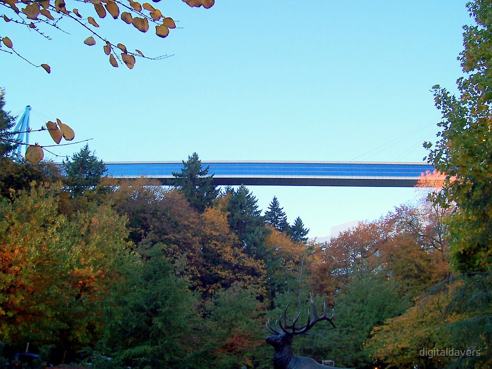 Sky Bridge by digitaldavers