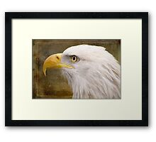 Strength and Beauty - Nature Art Framed Print