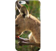 Preening Wallaby iPhone Case/Skin
