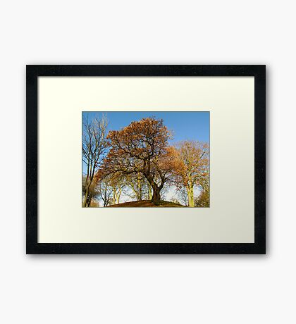 COLOURED TREE Framed Print