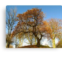 COLOURED TREE Canvas Print