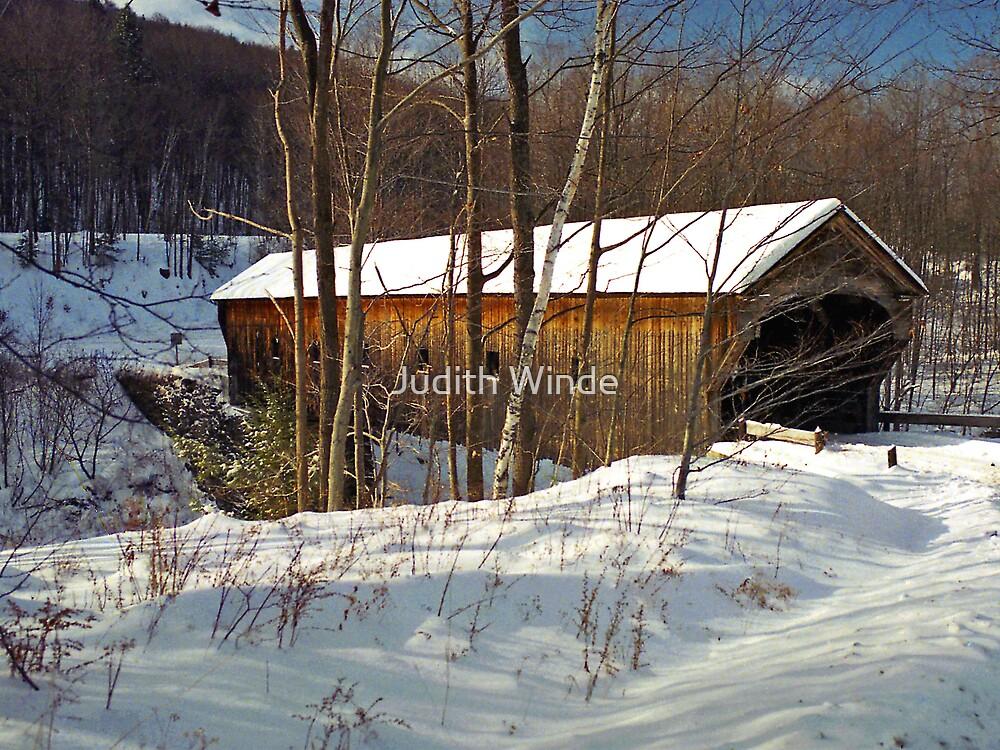 Winter Bridge by Judith Winde