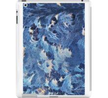 Winter Freeze iPad Case/Skin
