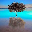Aquamarine Morning - Victoria Point Qld Australia by Beth  Wode