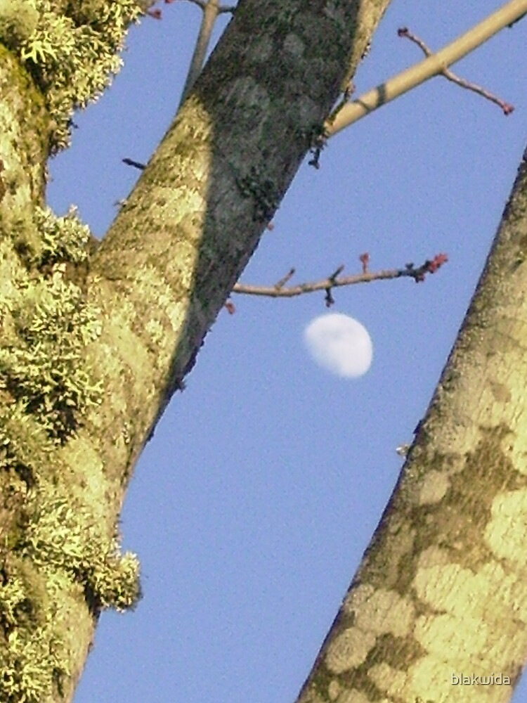 i see the moon by blakwida