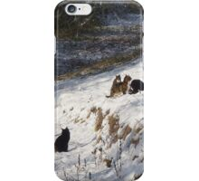 Snow Cats In Paradise iPhone Case/Skin