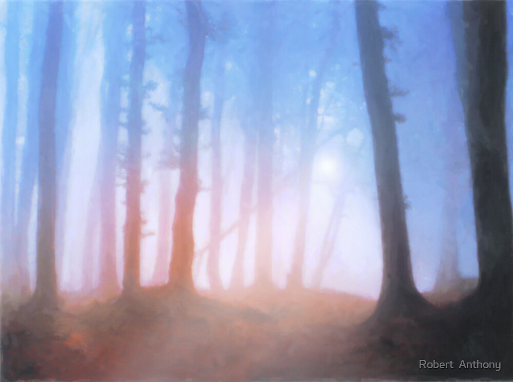 Foggy Forest by Robert  Anthony