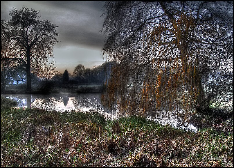 The Pond at Dawn by Glasseye