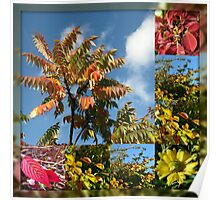 Colours of Autumn in Mirrored Frame Poster