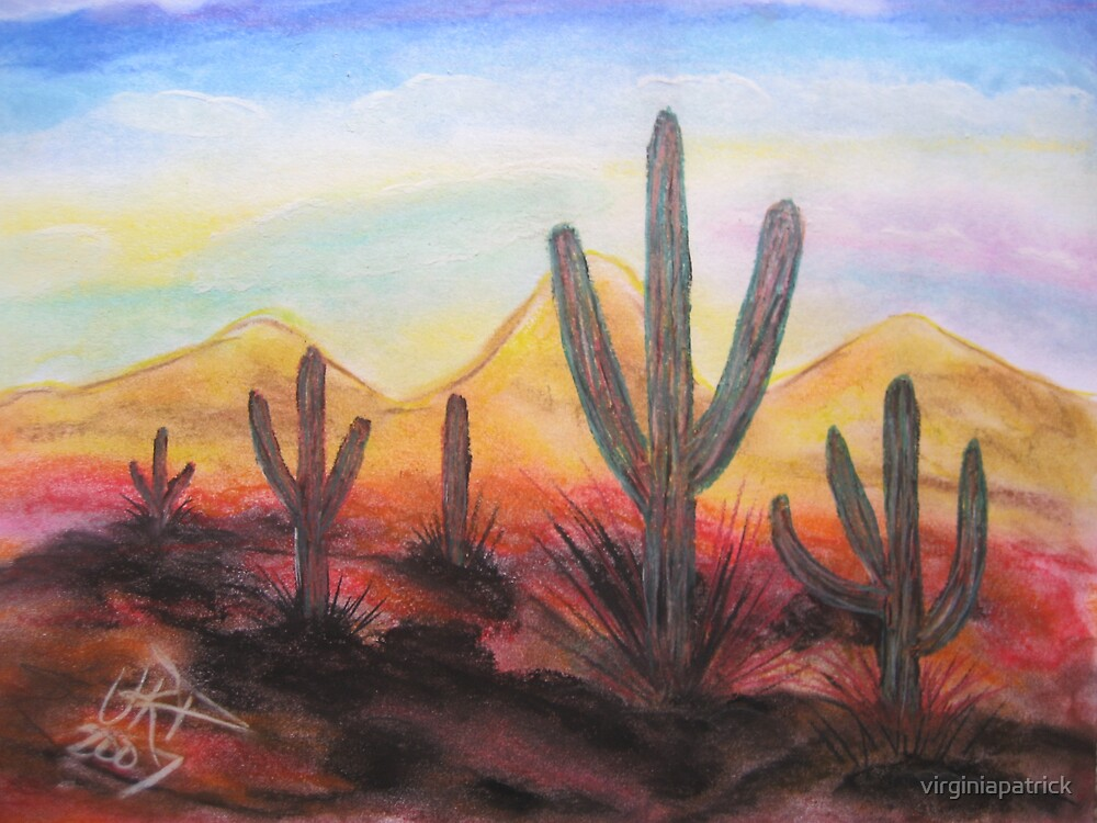 Arizona Evening by virginiapatrick