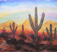 Arizona Evening by virginiapatrick