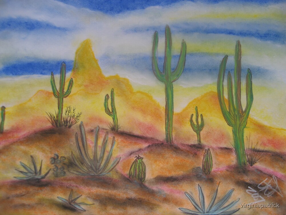 Arizona in the Afternoon by virginiapatrick