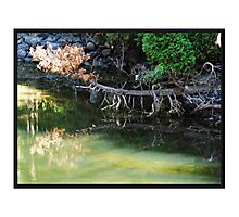 Water Perfect Photographic Print