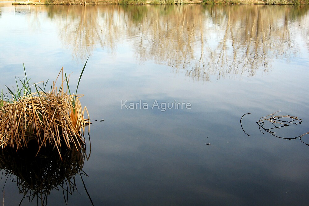 Tranquil Water by Karla Aguirre