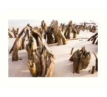 Beach Skeletons Art Print