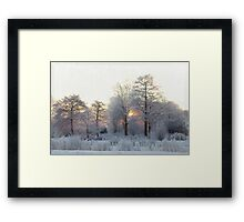 The first morning after the first snow... Framed Print
