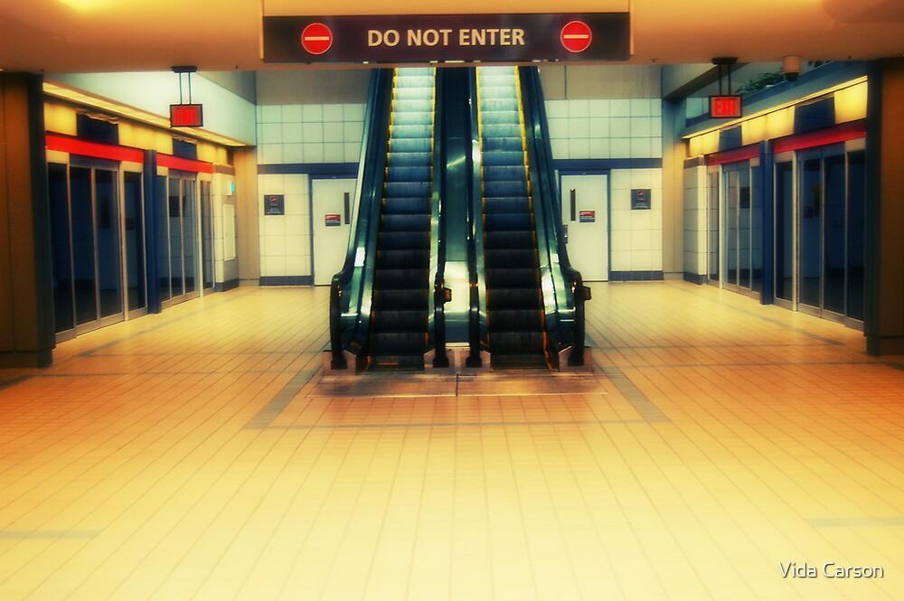 escalators by Vida Carson