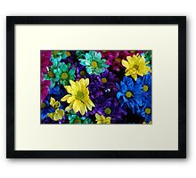 Rainbow Of Colours Framed Print