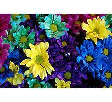 Rainbow Of Colours Photographic Print