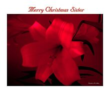 Merry Christmas Sister by Madeline M  Allen