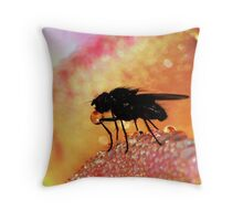 Waiting in the Wings ! Throw Pillow