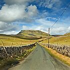 Penyghent, Yorkshire Dales by Steve  Liptrot
