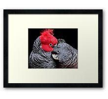 Love, Love Me Do Framed Print
