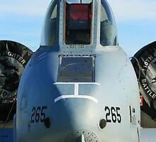 A-10 Warthog by Paul Lenharr II