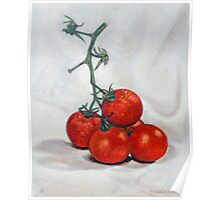 Dutch Tomatoes 3 Poster