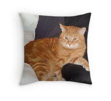 Garfield Throw Pillow