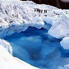 Hiking on Franz Josef  by Stacey Hatton