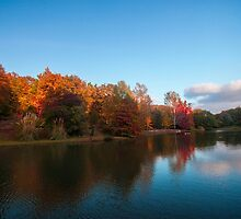 Autumn by ugurlu