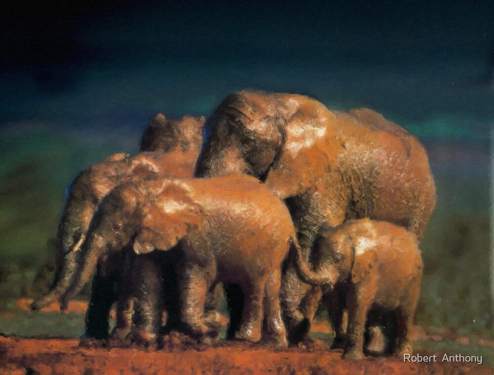 Muddy Elephants by Robert  Anthony