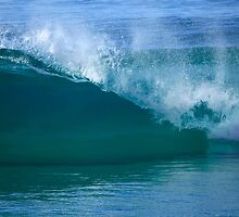 The Perfect Wave by Noel Elliot