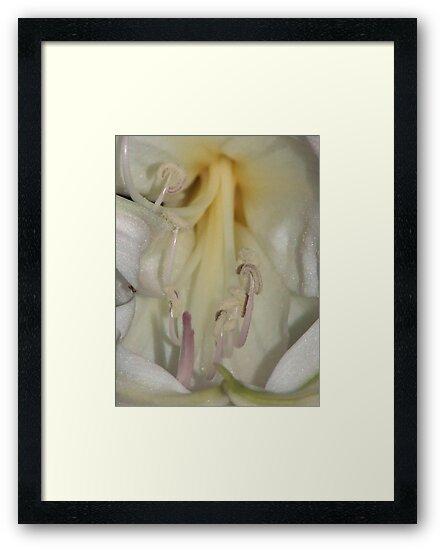 Naked Lady. by binjy