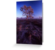 morning light - outback NSW. Greeting Card