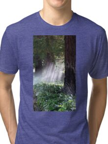 Mystical Moment with the Redwoods Tri-blend T-Shirt