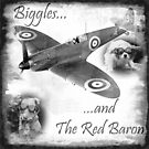 Biggles And The Red Baron by Harri