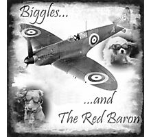 Biggles And The Red Baron Photographic Print