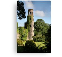 Blarney Castle - County Cork, Ireland Canvas Print
