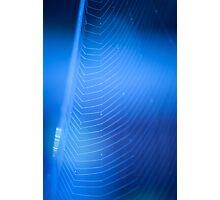 blue web Photographic Print