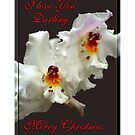 I Love You Darling - Merry Christmas by Madeline M  Allen