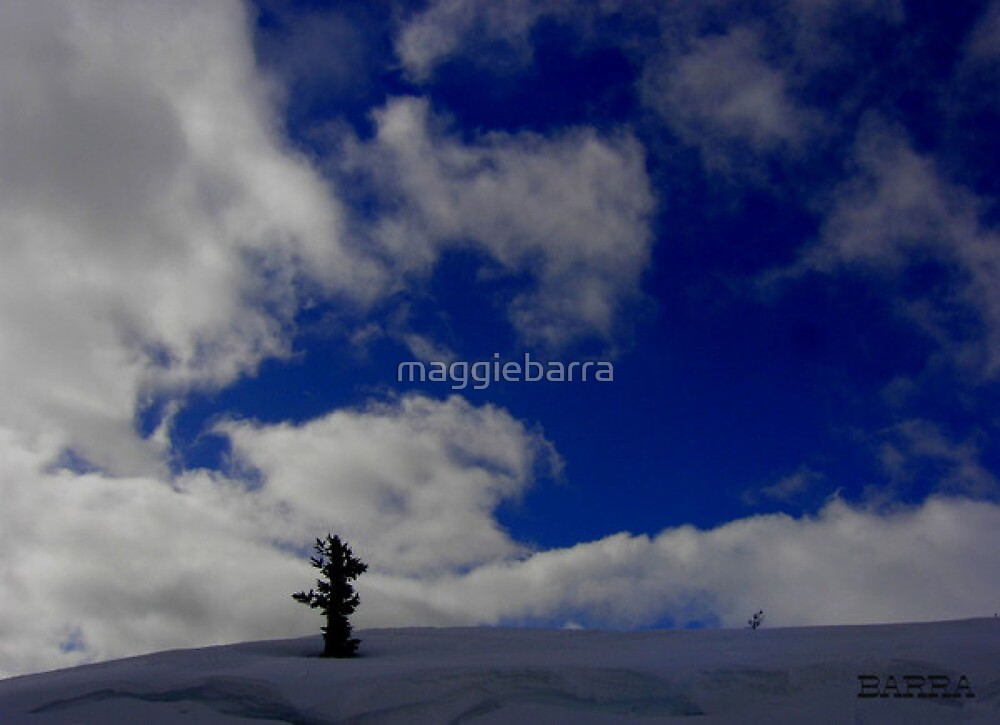ENDURANCE by maggiebarra