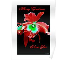 Merry Christmas - I love You Poster