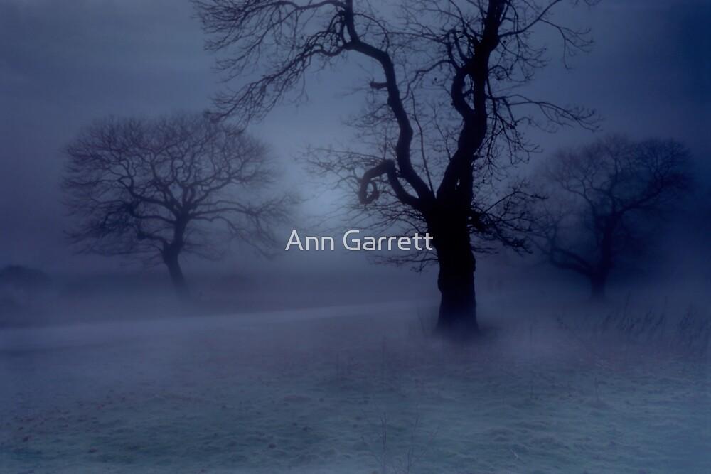 Blue Mist by Ann Garrett