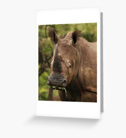Prehistoric beauty Greeting Card