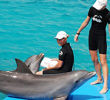 Dolphin & Trainer by rooijlhm