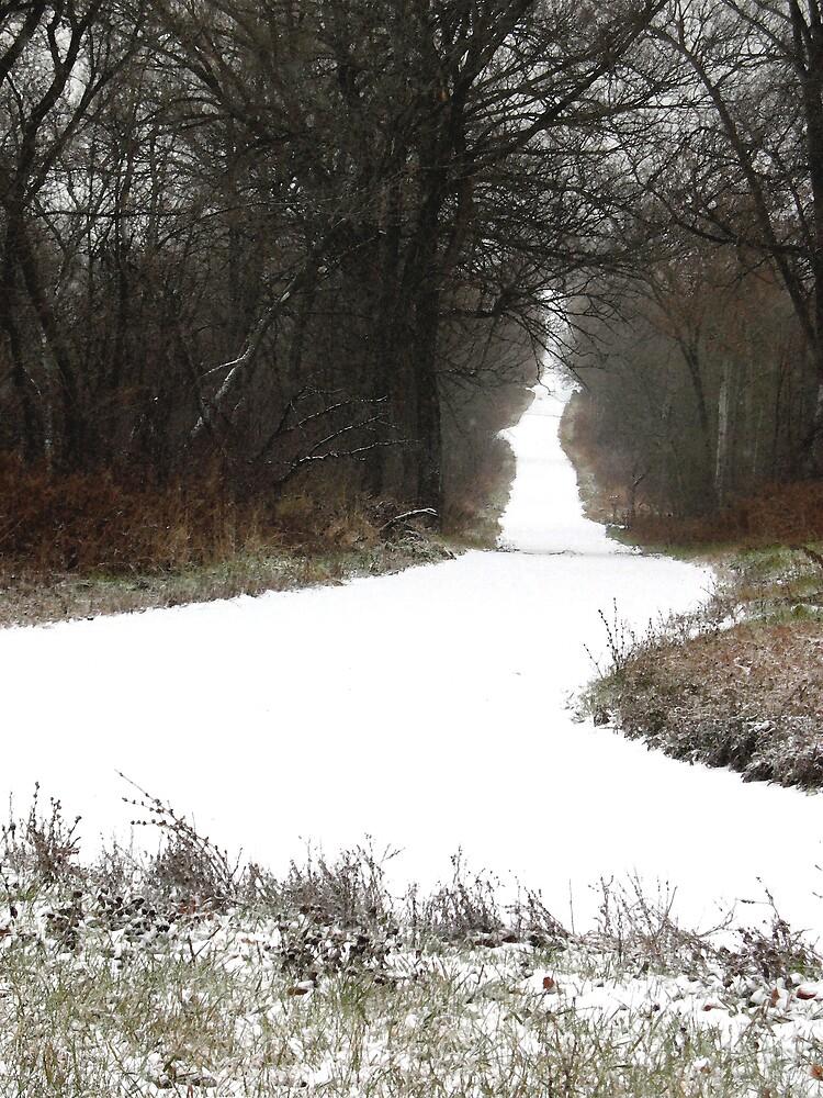 First Snow by nikspix