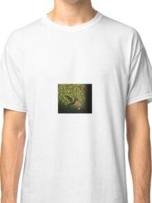 Fringillid Finch Classic T-Shirt