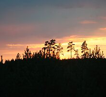 Sunset in Sweden by lucifer007